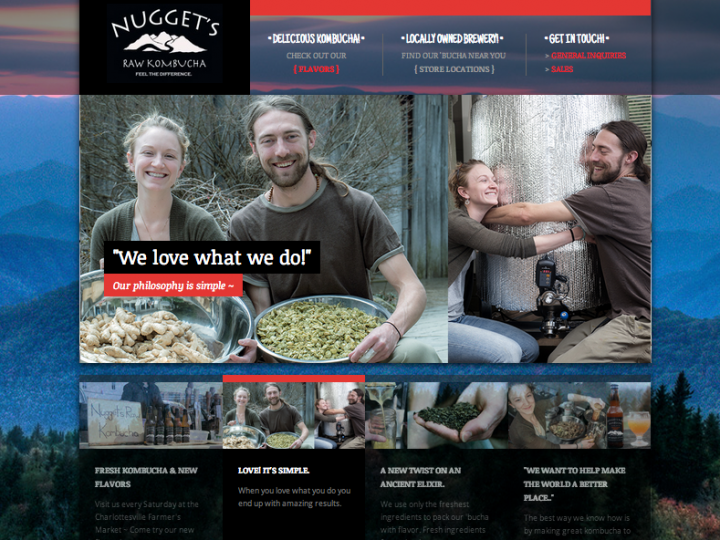 Nugget's Raw Kombucha New Website