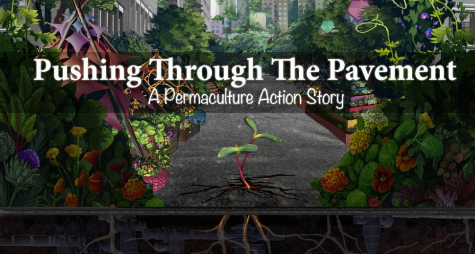 Permaculture Action Tour Film