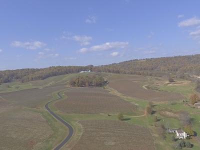 Trump Winery Virginia
