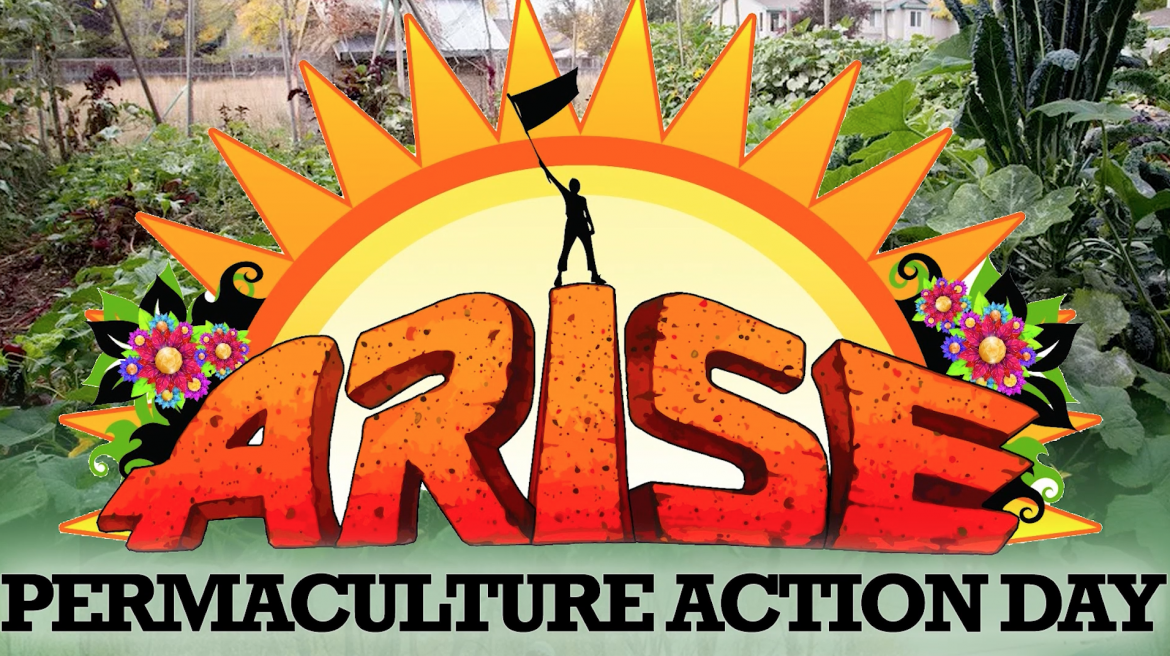 Arise Music Festival Permaculture Action Day 2017