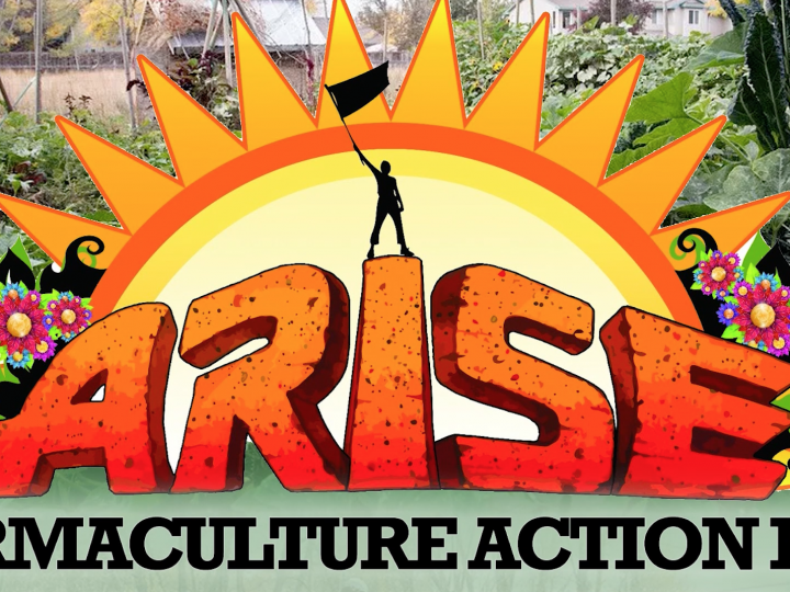 Permaculture Action Day at Arise Music Festival 2017 || EXTENDED RECAP